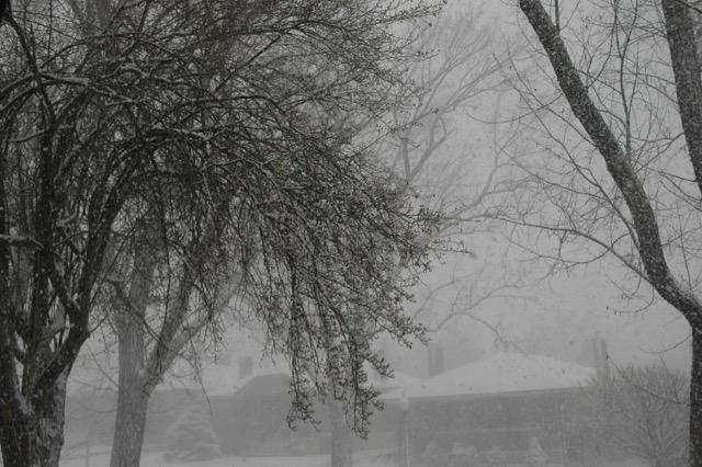 Spring Snow in the SLC