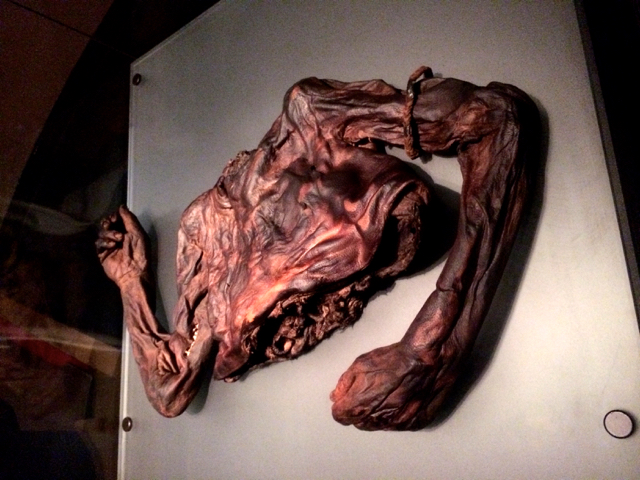Bog Body. Irish National History Museum, Dublin, Ireland