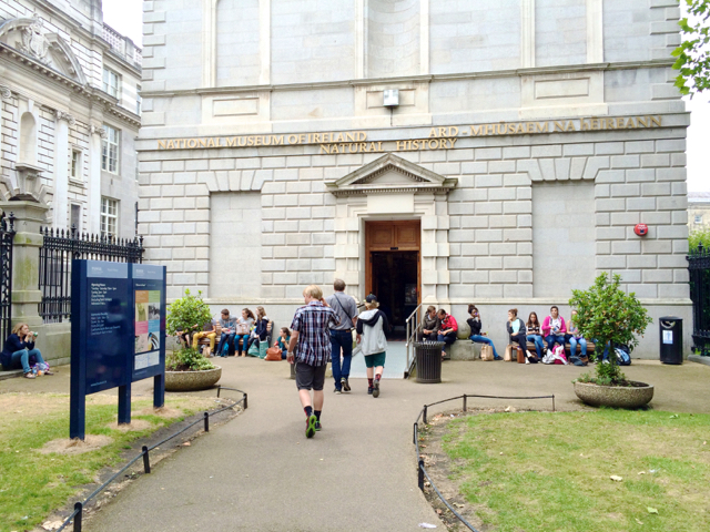 National History Museum of Ireland