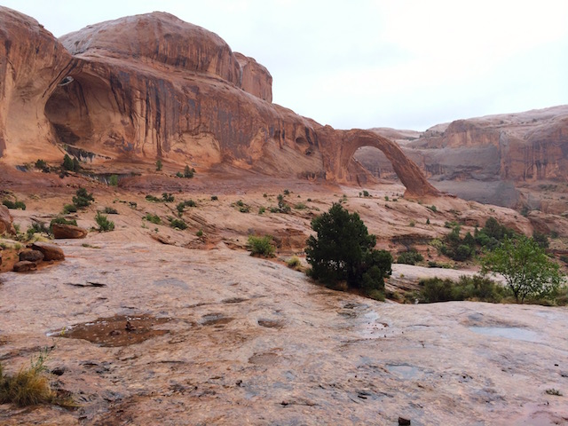 Corona Arch and Bow Tie Arch, Moab, UT