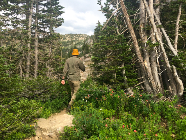 Albion Basin hike to Cecret Lake in Little Cottonwood Canyon, Utah