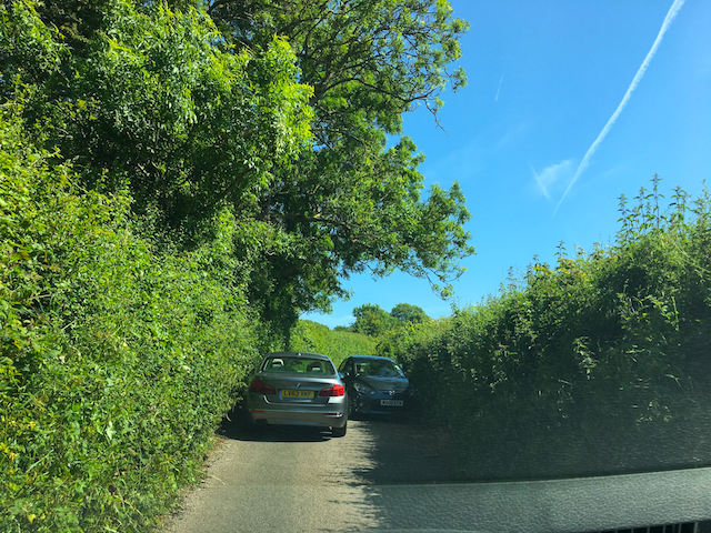 High-Hedge-Lined Roads, Devon, United Kingdom